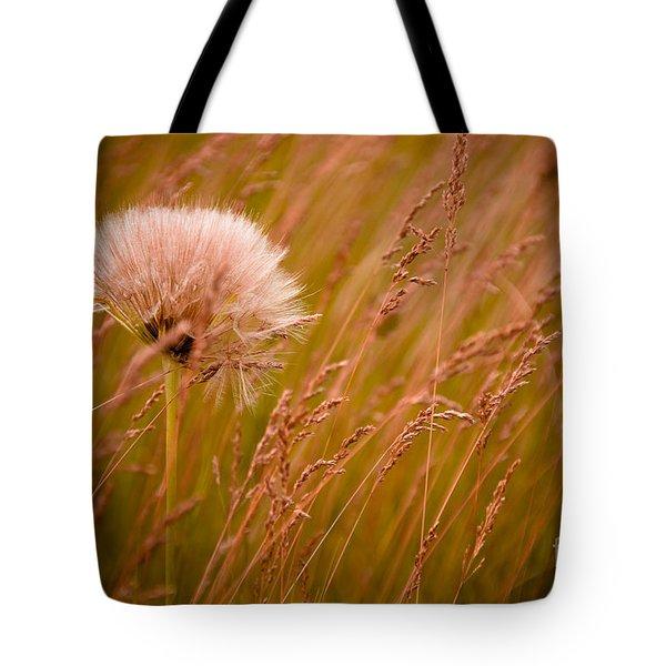 Lone Dandelion Tote Bag by Bob Mintie