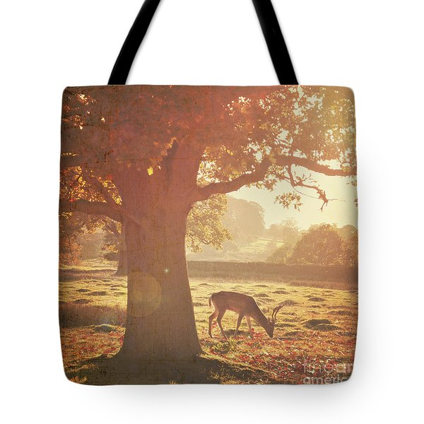 Tote Bag featuring the photograph Lone Deer by Lyn Randle