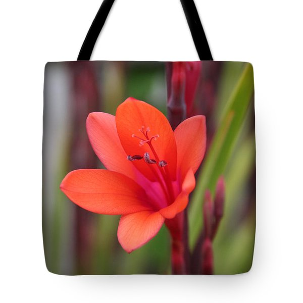 Tote Bag featuring the photograph Lone Flower by Holly Ethan