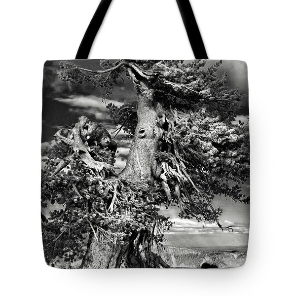 Lone Gnarled Old Bristlecone Pines At Crater Lake - Oregon Tote Bag
