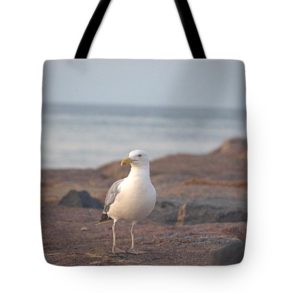 Tote Bag featuring the photograph Lone Gull by  Newwwman
