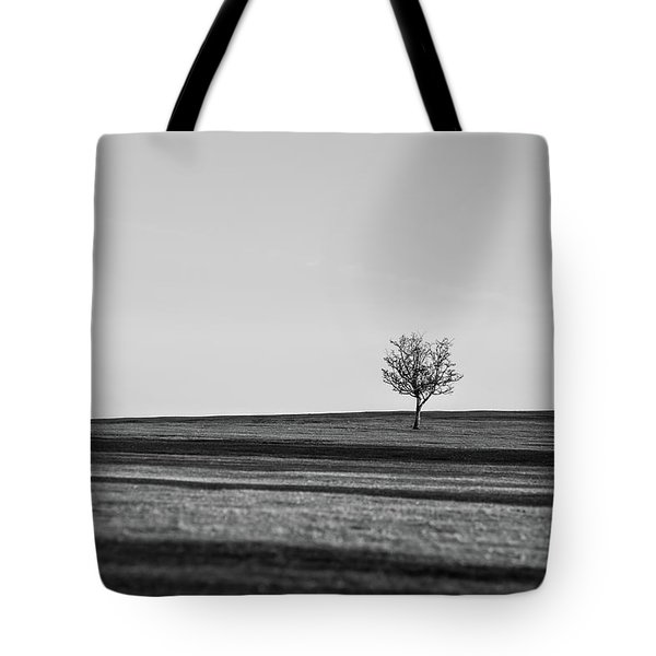 Lone Hawthorn Tree Iv Tote Bag