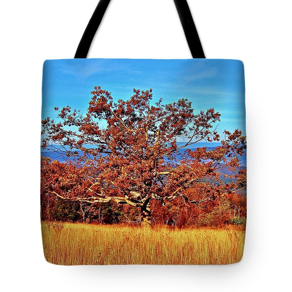 Lone Mountain Tree Tote Bag