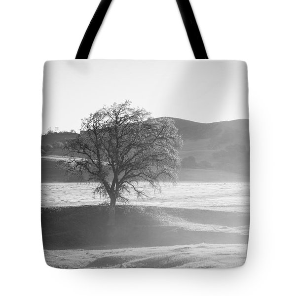 Lone Oak, Clearing Fog, San Andreas Rift Valley Tote Bag