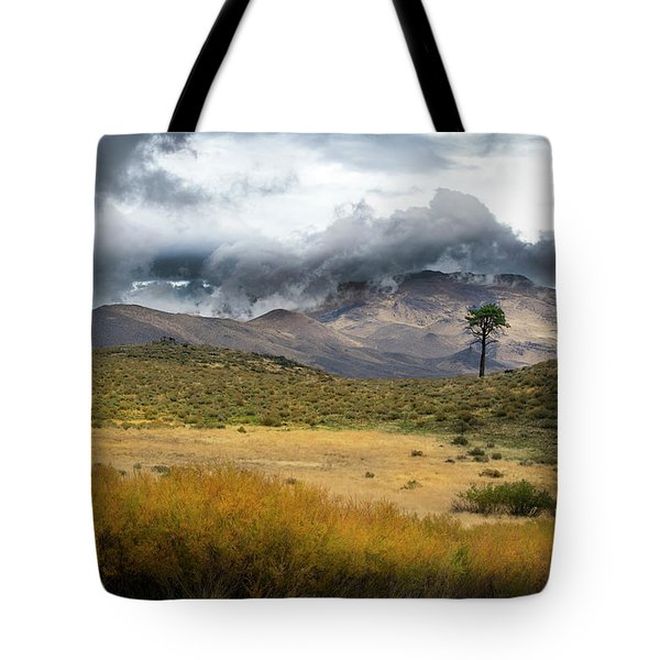 Tote Bag featuring the photograph Lone Pine High Desert Nevada by Frank Wilson