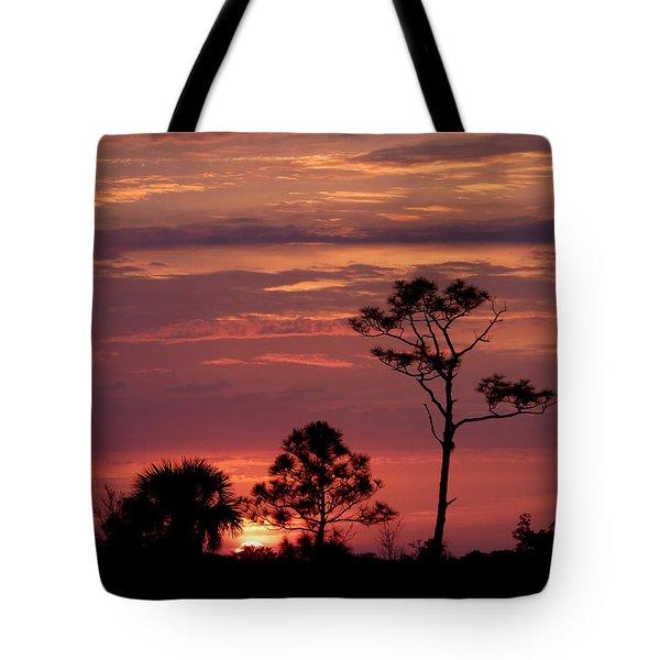 Lone Pine Sunset Tote Bag