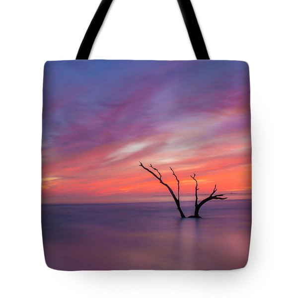 Tote Bag featuring the photograph Lone Ranger by RC Pics