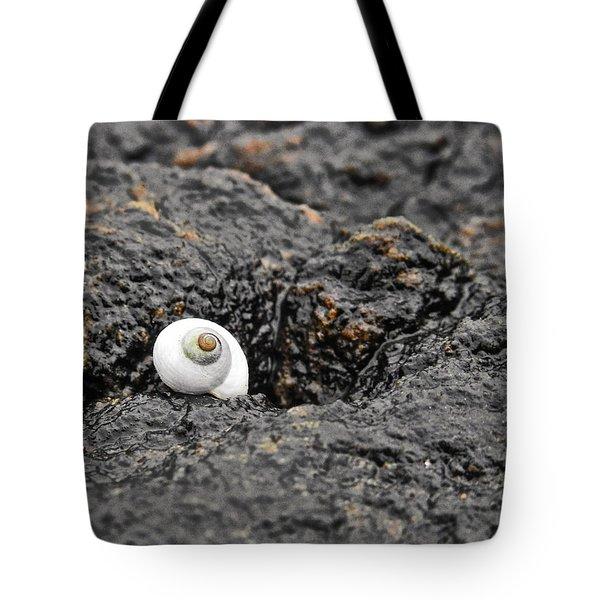 Lone Seashell Tote Bag