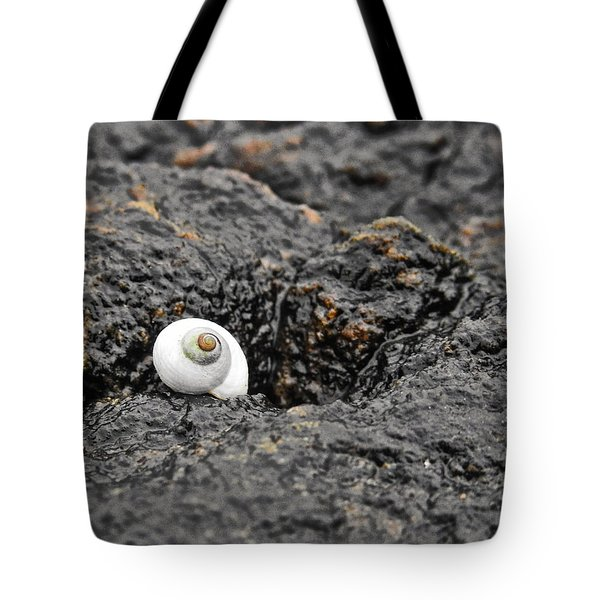 Lone Seashell Tote Bag