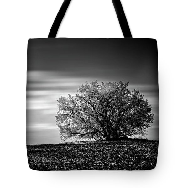 Tote Bag featuring the photograph Lone Tree by Dan Jurak