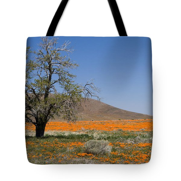 Lone Tree In The Poppies Tote Bag by Sandra Bronstein