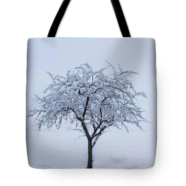 Lone Tree In Winter Tote Bag