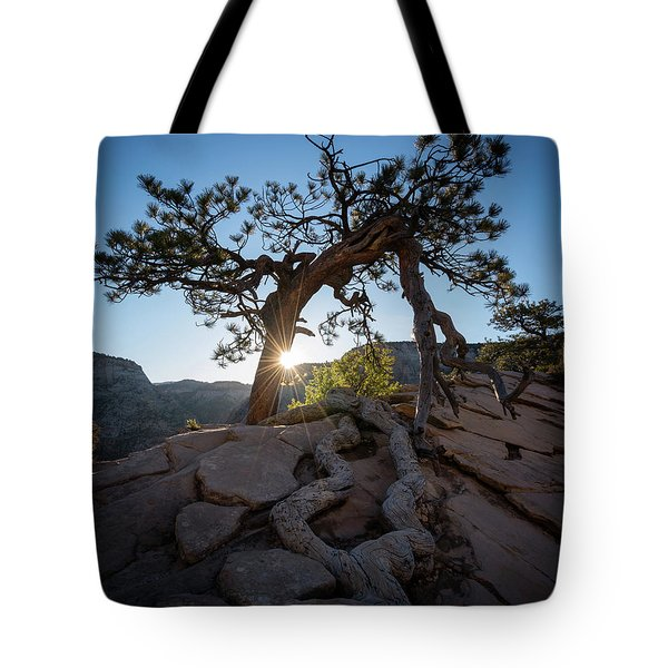Lone Tree In Zion National Park Tote Bag