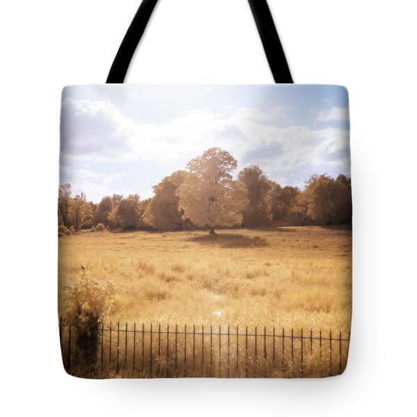 Tote Bag featuring the photograph Lone Tree Ir by Brian Hale