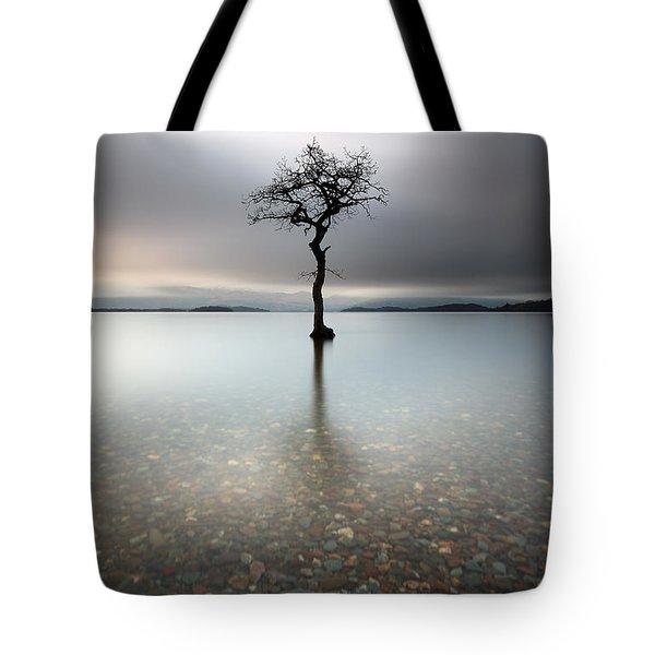 Lone Tree Loch Lomond Tote Bag
