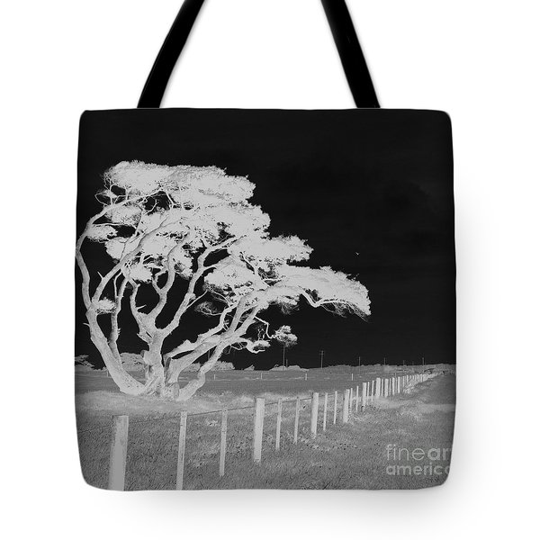 Lone Tree, West Coast Tote Bag by Nareeta Martin