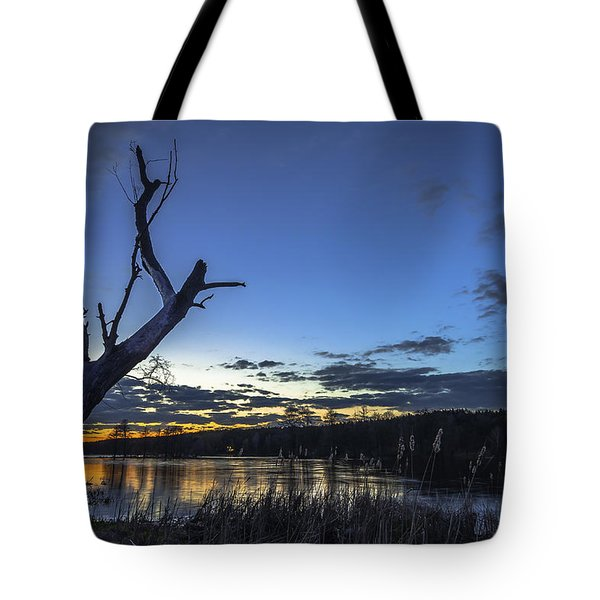 Tote Bag featuring the photograph Lone Witness by Julis Simo
