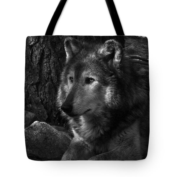 Lone Wolf Tote Bag by Karol Livote