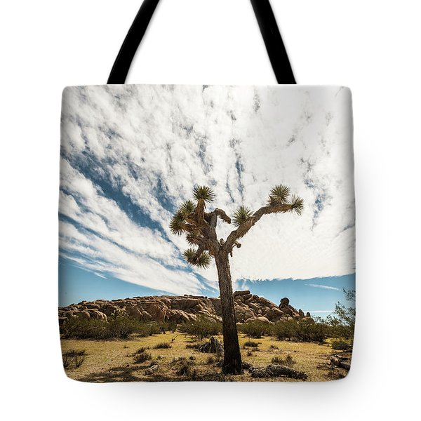 Lonely Joshua Tree Tote Bag by Amyn Nasser