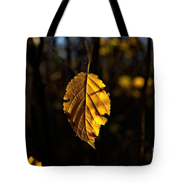 Tote Bag featuring the photograph Lonely Leaf by Cendrine Marrouat