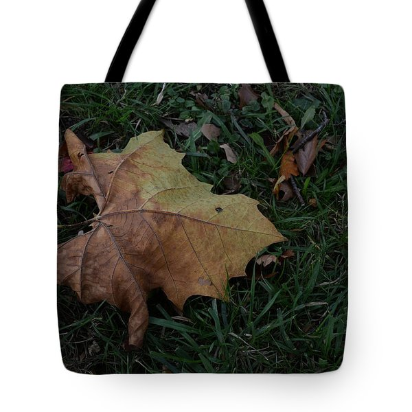 Lonely Leaf Tote Bag
