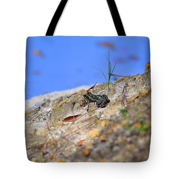 Tote Bag featuring the photograph Lonely Leopard by Al Powell Photography USA