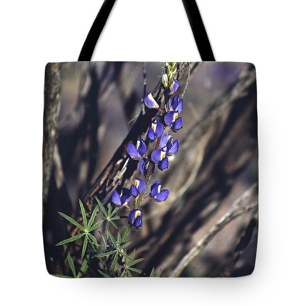 Lonely Lupine Tote Bag