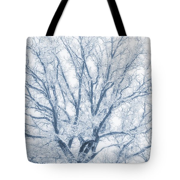 lonely Oak tree in snowy, misty landscape Tote Bag