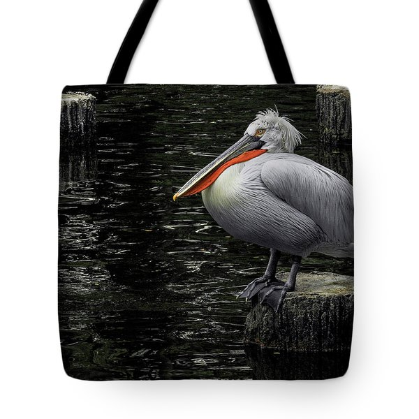 Tote Bag featuring the photograph Lonely Pelican by Pradeep Raja Prints