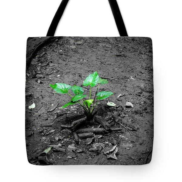 Lonely Plant Tote Bag