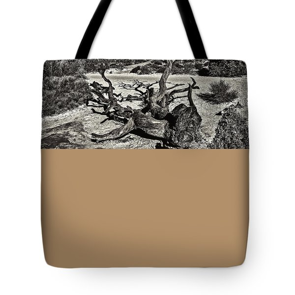 Lonely Tree #4  Tote Bag by Alex Galkin