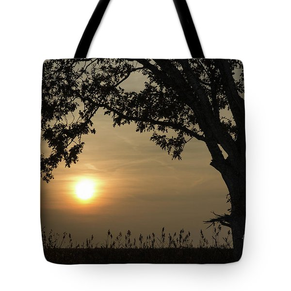 Lonely Tree At Sunset Tote Bag