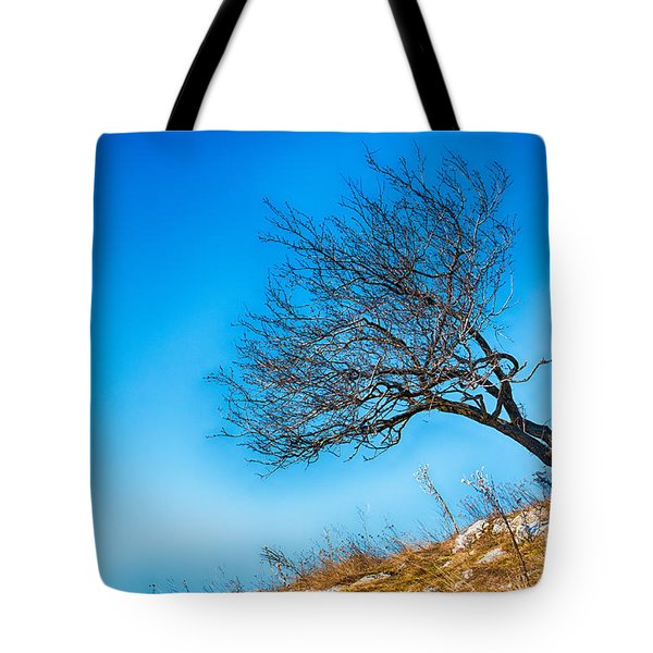 Lonely Tree Blue Sky Tote Bag