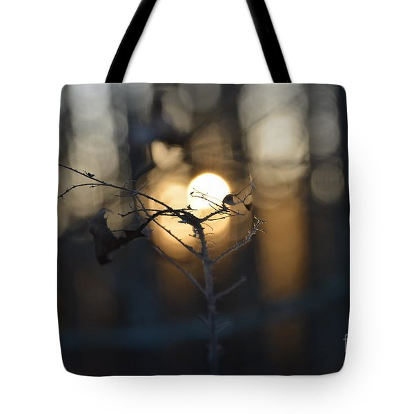 Lonely Tree Branch With Bokeh Love -georgia Tote Bag
