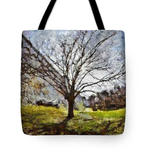 Tote Bag featuring the painting Lonely Tree by Derek Gedney