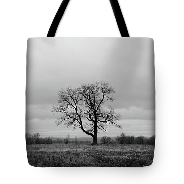 Lonely Tree In A Spring Field Tote Bag