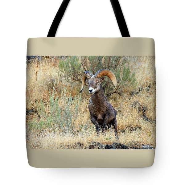 Loner IIi Tote Bag by Steve Warnstaff