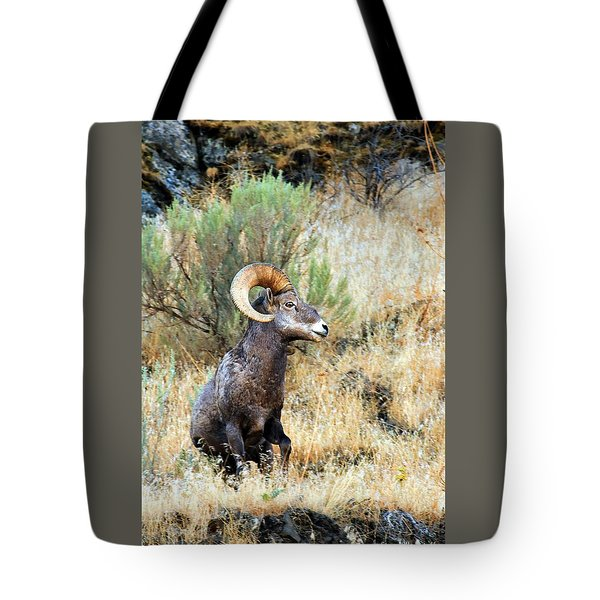 Loner Iv Tote Bag by Steve Warnstaff