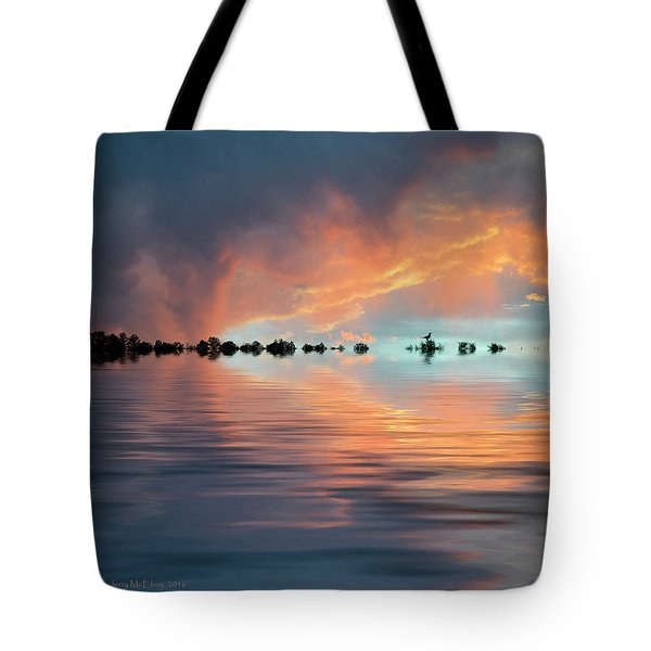 Lonesome Bird Tote Bag by Jerry McElroy