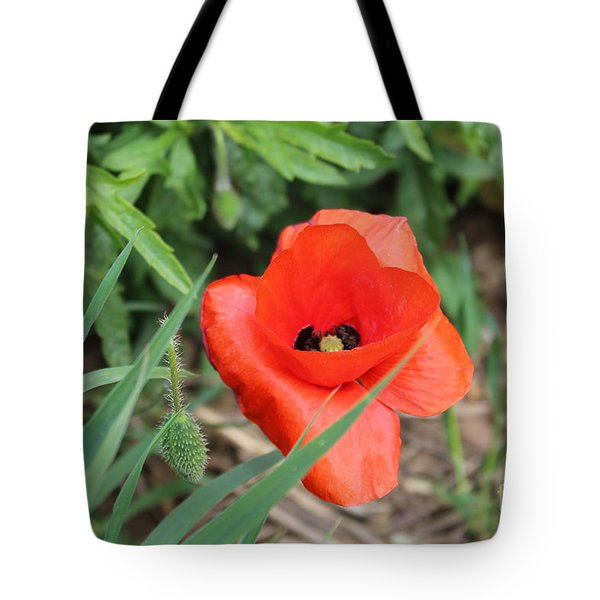 Lonesome Poppy Tote Bag