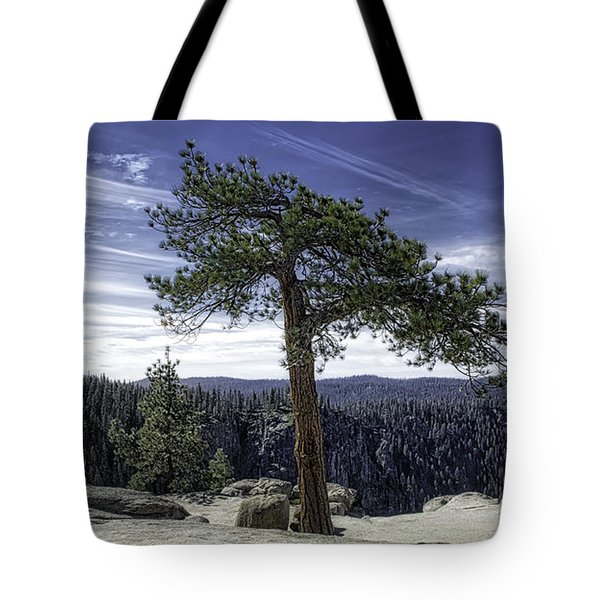 Lonesome Tree Tote Bag