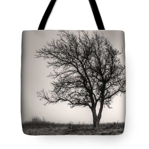 Tote Bag featuring the photograph Lonesome Tree by Tamyra Ayles
