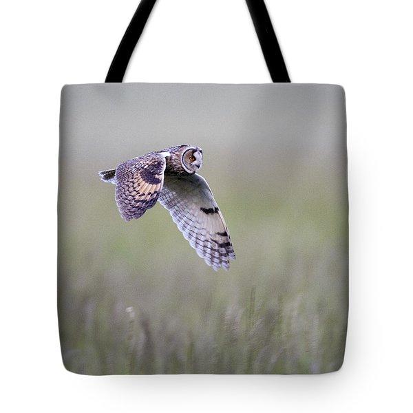 Long Eared Owl Hunting At Dusk Tote Bag