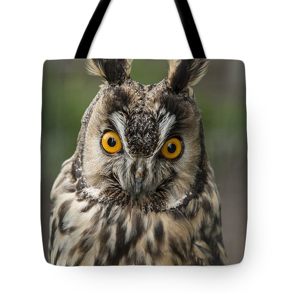 Long-eared Owl Tote Bag by Martina Fagan