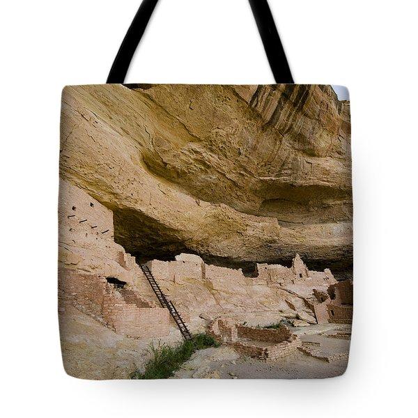 Long House View Tote Bag