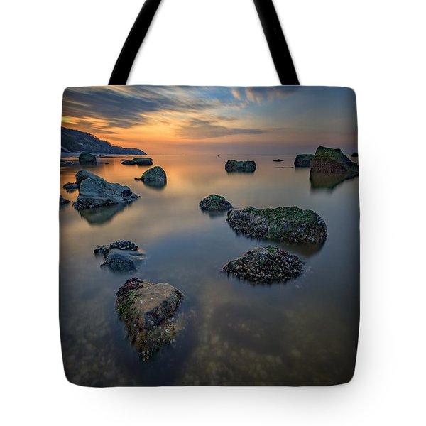Long Island Sound Tranquility Tote Bag by Rick Berk