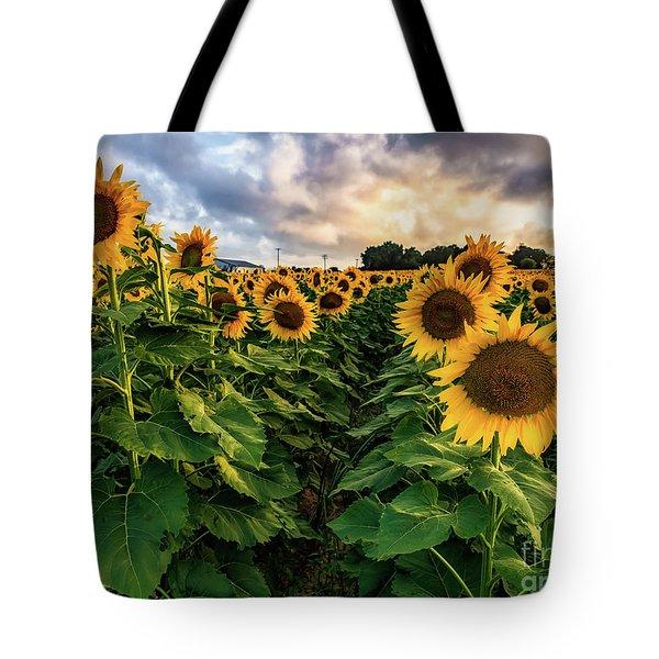Long Island Sunflowers  Tote Bag