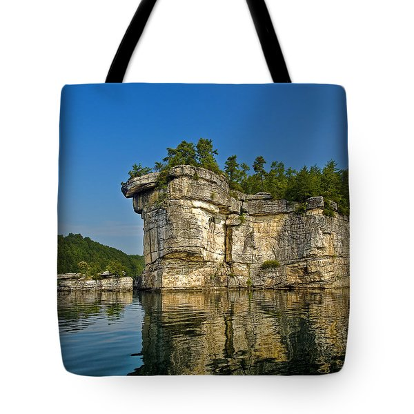 Long Point Tote Bag by Mark Allen