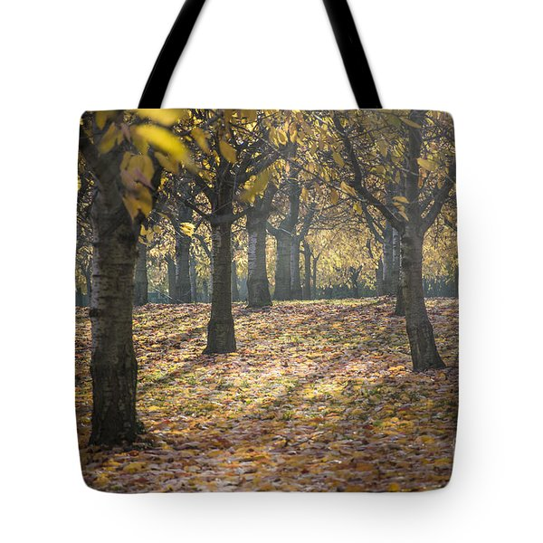 Long Shadow Tote Bag