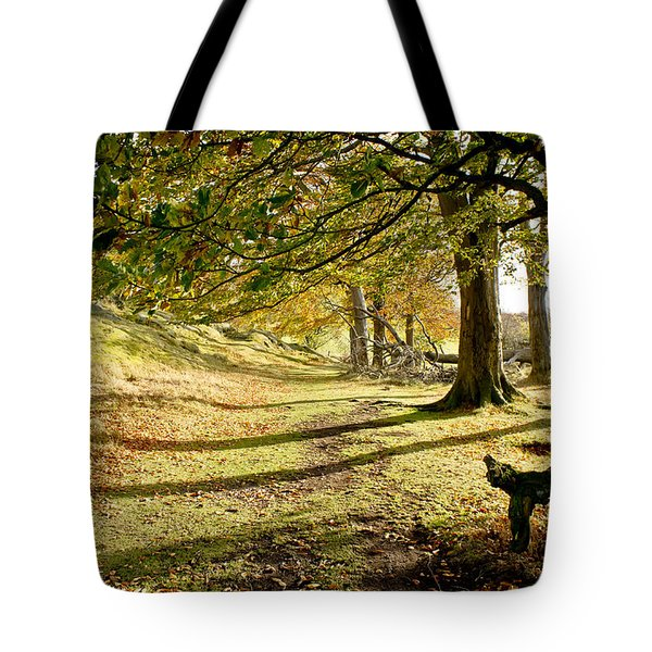 Long Shadows Of The Afternoon Tote Bag